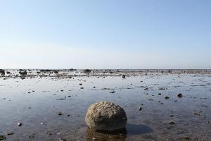 鵜ノ崎海岸で夏を楽しむみなさまへ