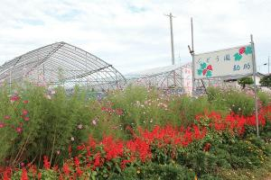 《ぶどう園 勘助》10月まで収穫できます!
